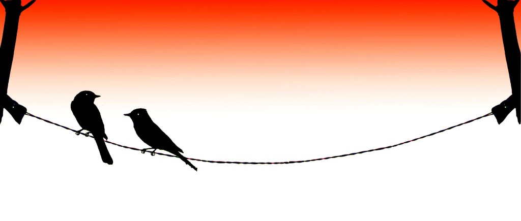 two-birds-on-a-wire-007